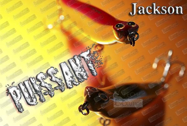 JACKSON Debu Nyoro 120 ''Puissant''