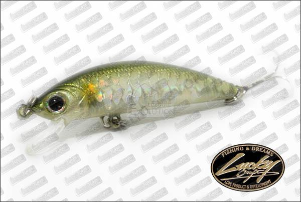 LUCKY CRAFT Humpback Minnow 50SP