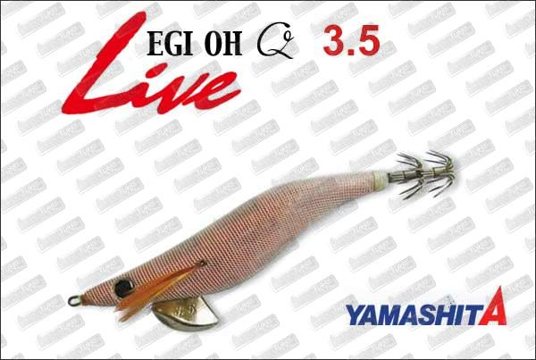 YAMASHITA EGI-Oh Q Live 3.5