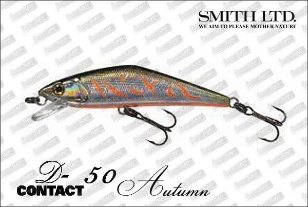 SMITH D-Contact 50 Autumn