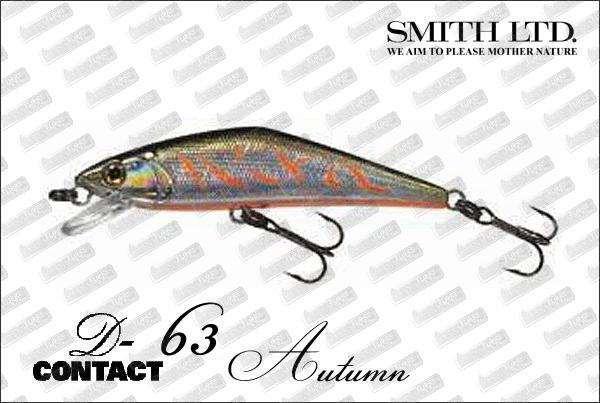 SMITH D-Contact 63 Autumn