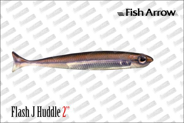 FISH ARROW Flash J Huddle 2
