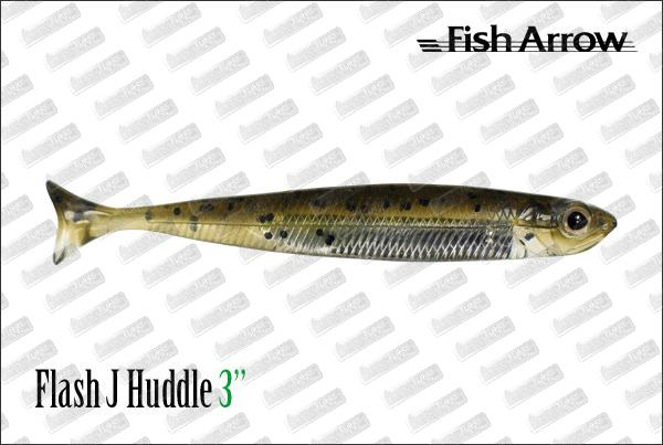 FISH ARROW Flash J Huddle 3''