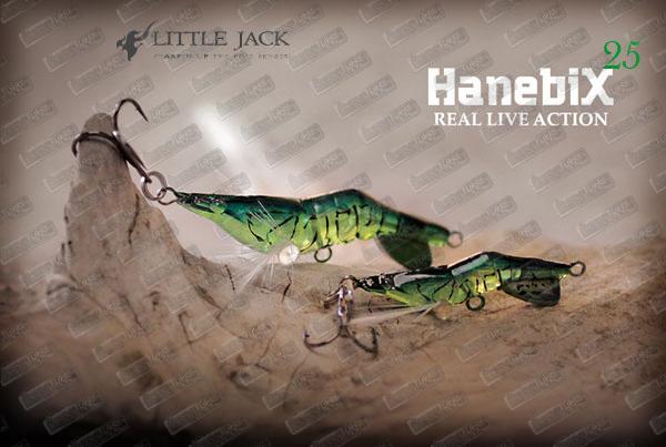 LITTLE JACK Hanebix 25