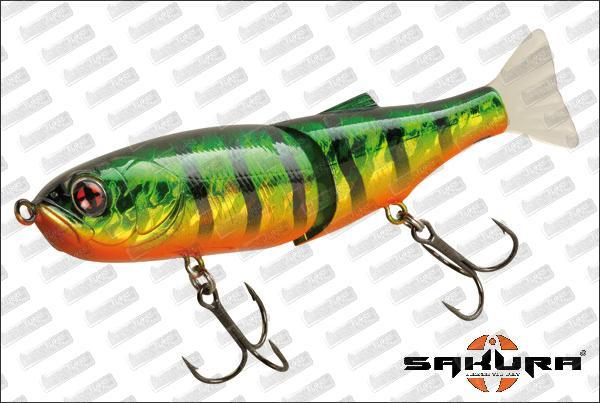 SAKURA S-Shiner 145