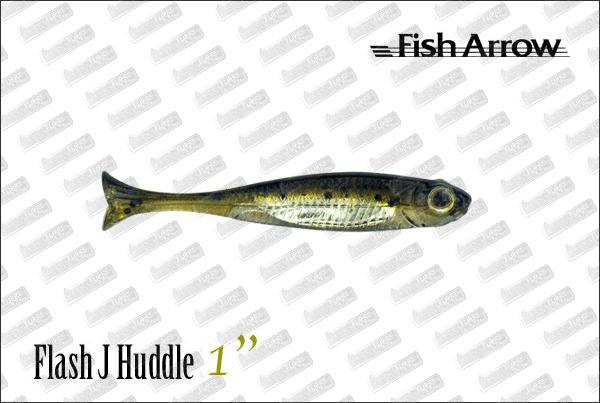 FISH ARROW Flash J Huddle 1