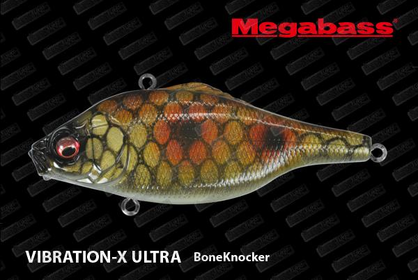 Vibration-X Ultra (BoneKnocker)