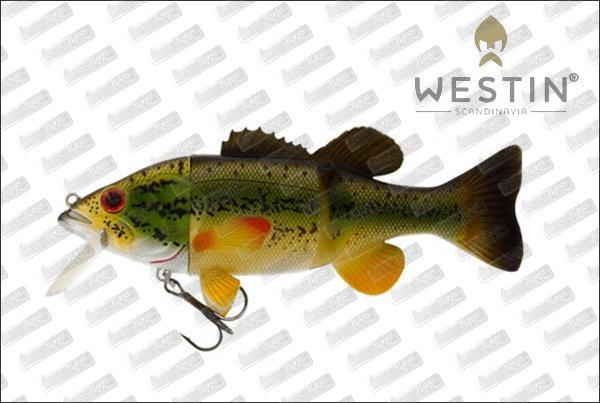 WESTIN Barry The Bass