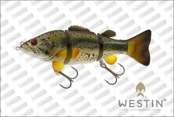 WESTIN Barry The Bass HL/SB