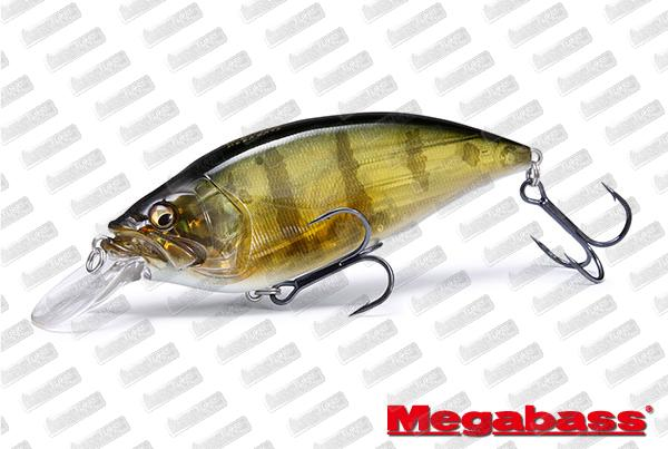 MEGABASS Big-M 40