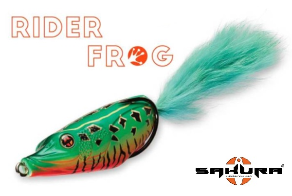 SAKURA Rider Frog 70