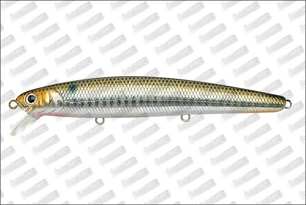 LUCKY CRAFT SW Flash minnow 110 SP Ancovy Venus
