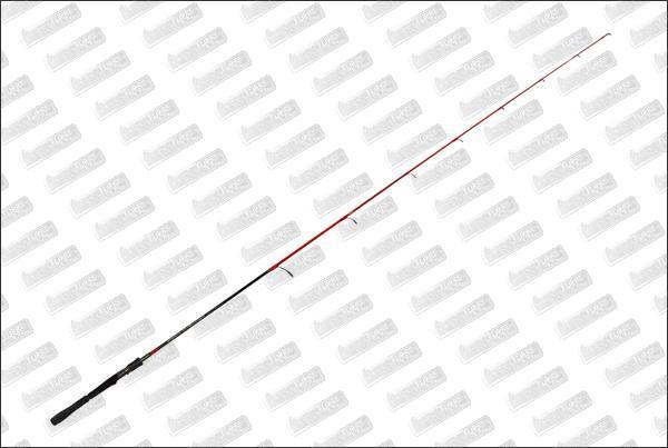 TENRYU Injection SPG 66 M