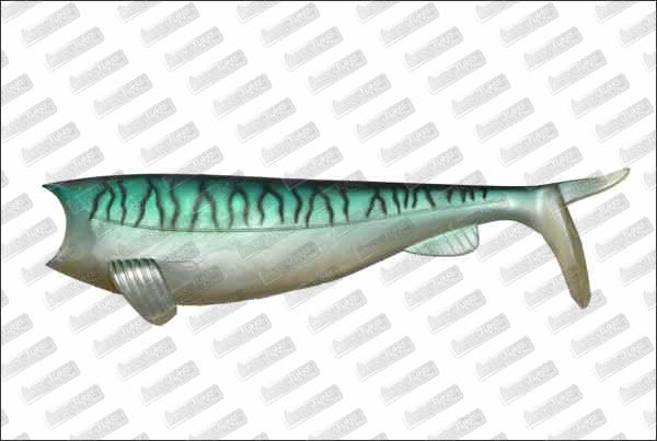 HART Absolute Soft Shad 120mm #55