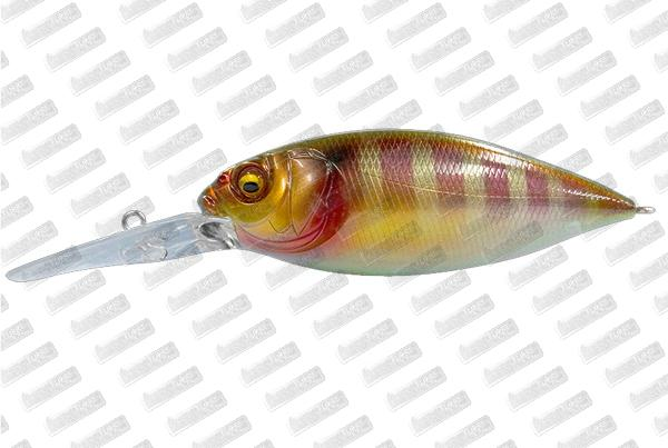 MEGABASS DX-Free 3.0 #PM Gill