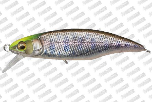MEGABASS Great Hunting 50 Flat Side FS #Indicator Yamame