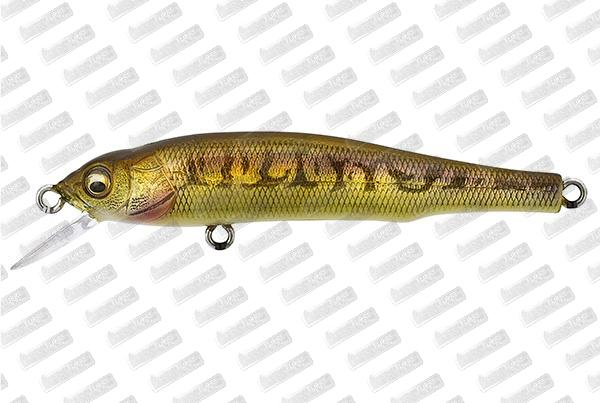 MEGABASS Great Hunting 70 Flat Side #Vairon