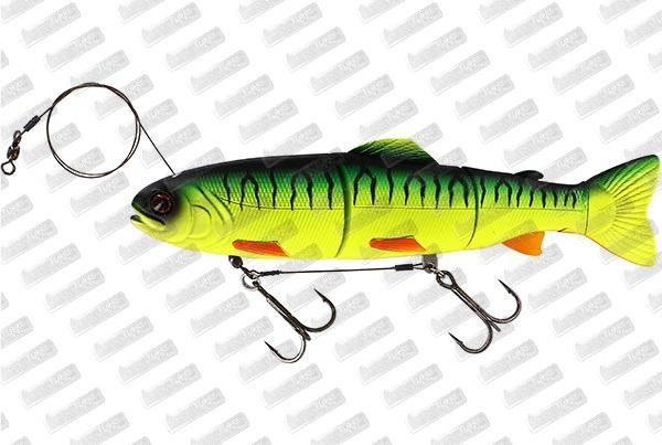 WESTIN Tommy The Trout HL Line #Firetiger
