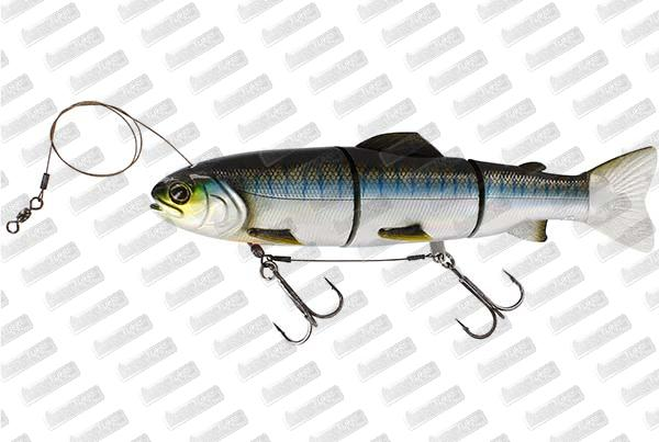 WESTIN Tommy The Trout HL Line #Blueback Herring