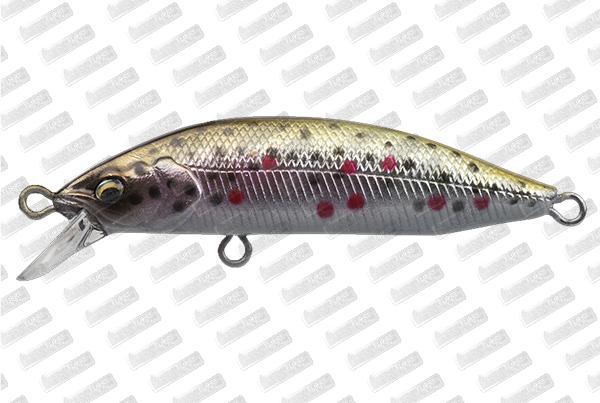 BABYFACE M50SR-S #06 Brown Trout