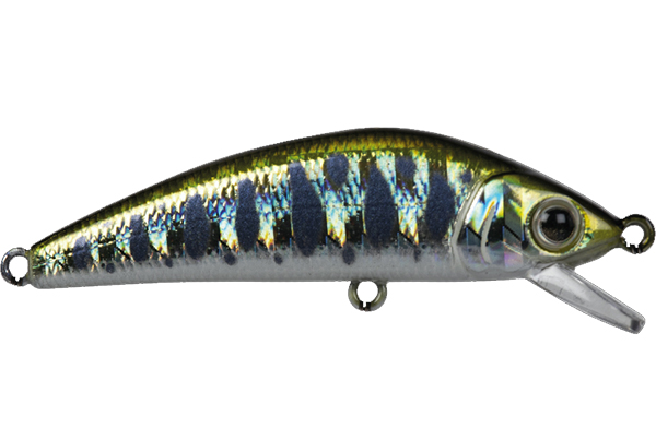 FOREST iFish FT 50S #1