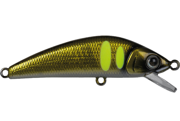 FOREST iFish FT 50S #6
